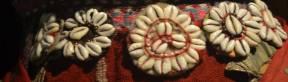 Kaurimuscheln, Museum Pergamon, Türkei