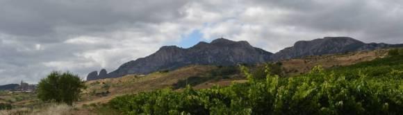 landschaftsahnin-bei-espronceda-navarra-spanien1.jpg